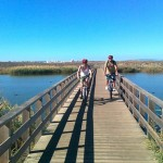 albufeira-coast-and-countryside-mountain-bike-tour-in-albufeira-226843